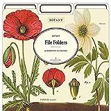 Cavallini Papers & Co. Botany Heavyweight File Folders (Set of 12)
