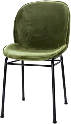 YLLN Dining Chairs Kitchen Chair Modern Simplicity Arc backrest Soft Cushion Solid Iron Frame Carrying 5 Colors 43x47x58cm (Color : Green)