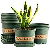 Yangbaga Vasi per Piante in plastica tondi Vassoio ,16 cm , vasi per Piante per Interno ed Esterno, Buon Regalo da Giardino (10 Pezzi)