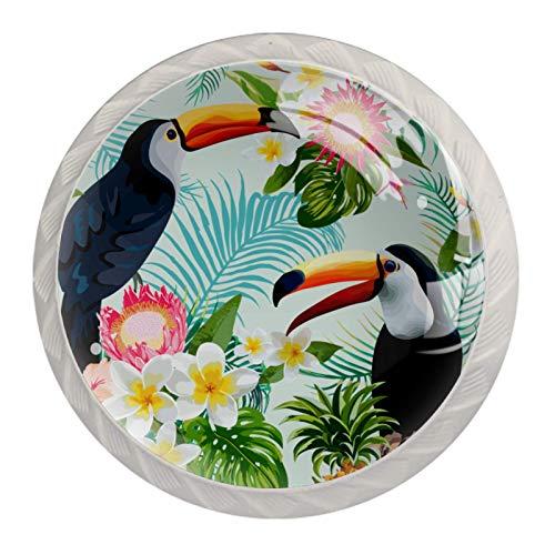 Perillas de gabinete de cocina Perillas decorativas redondas Gabinete Cajones de armario Tirador de tocador 4PCS Tucán tropical Aves Estampado floral