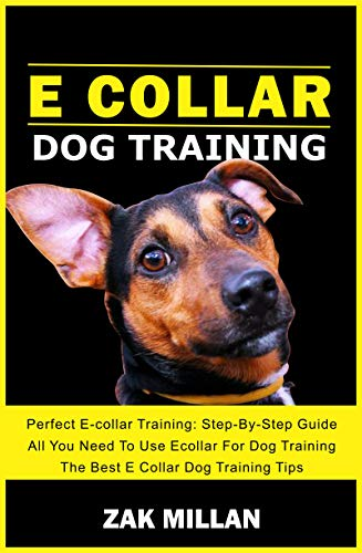 E Collar Dog Training: Perfect E-collar Training: Step-By-Step Guide You Need To Use Ecollar For Dog Training (The Best E Collar Dog Training Tips) (Dog Training Guide, Tips and Tricks Book 1)