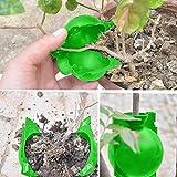 5/8/12 cm Plant Rooter Box Plant Rooter Ball Hochdruck Pflanzenzüchtung Ball Professional Propagatoren Gartenarbeit Anzuchtsets Plant Rooting Device für Innen Außenpflanzen (S, Grün)