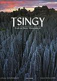 Tsingy - Forêt de Pierre - Madagascar