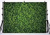 Allenjoy 9x6ft Fabric Green Leaves Backdrop for Studio Photography Natural (NOT Actual/Artificial) Grass Pictures Background Bride Baby Shower Spring Birthday Party Photo Booth Prop Wedding Decors