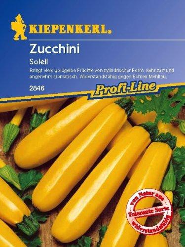 Zucchini, 'Soleil, gelb'