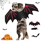 Pet Bat Wings for Small Size Dog and Cat, DZY Halloween Cat Bat Wings Fancy Dress Outfit Wing for Puppy Kitten Cosplay Prop Costume Dog Clothing for Halloween Party, with Black Dog Leash