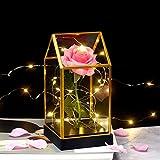 shirylzee Kit di Rose,La Bella e la Bestia Rossa di Seta e Luce a LED in Cupola di Vetro su Base in Legno Fiori Artificiali Rosa Rosa per la Decorazione della casa Anniversario di Matrimonio