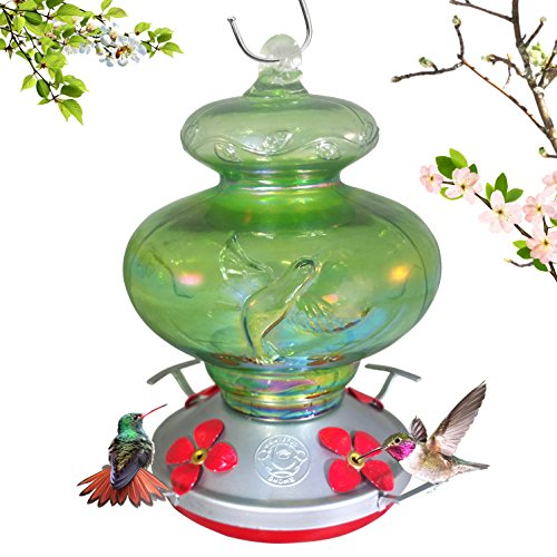 Grateful Gnome - Hummingbird Feeder - Hand Blown Glass - Green Hummingbird 26 Fluid Ounce