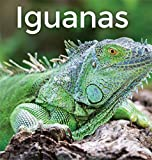 Iguanas 2: World's best picture books (English Edition)