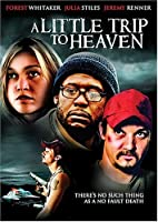 A little trip to heaven[リージョン1][Import]