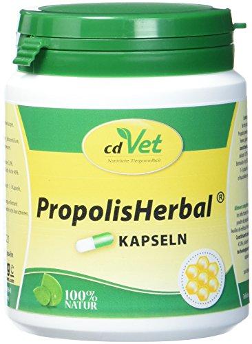 cdVet Naturprodukte PropolisHerbal 100 Kapseln - Hund, Katze, Kleintiere - Ergänzungsfuttermittel - Stärkung des Immunsystems + Vitalität für den Organismus - Vitaminversorger - Organunterstützung -