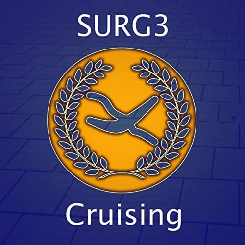 Surg3