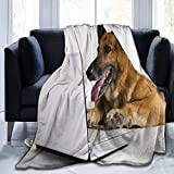 Manta de microfibra ultrasuave, pastor alemán, manta cálida para sofá o cama, 156 x 127 cm
