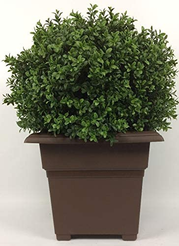 Outdoor Artificial UV Rated 2 ft Ball Boxwood Topiary Tree with Square Brown Planter product image