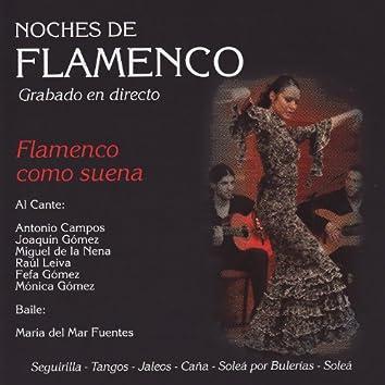 Noches de Flamenco - Flamenco Com Suena