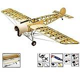 DW pour loisir classique Fokker-e Flying Modèle Aircraft Kits - 1.5 m Laser Cut Bois de Balsa Avion,4 ch RC Avion Modèle kit