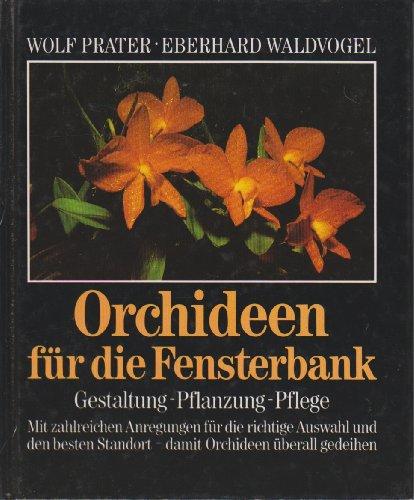 orchideen für die fensterbank. gestaltung - pflanzung - pflege