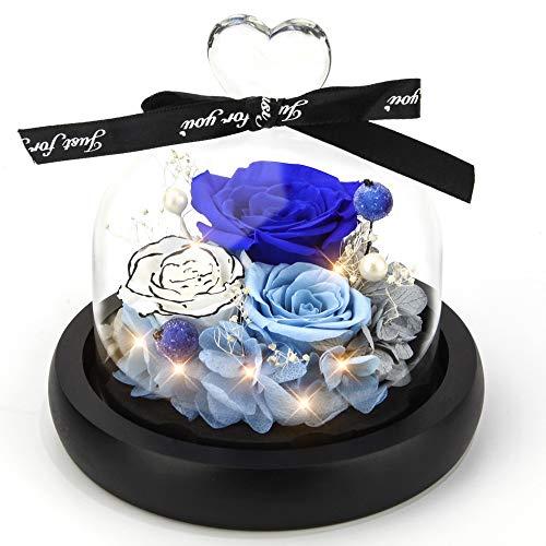 Kylin Glory 0 für immer blumen wahres ewigen rose - kylin ruhm bewahrt blumengeschenkes mit geführten stimmung lichtern für die valentinstag geburtstag (ozeanblau) Ocean Blue