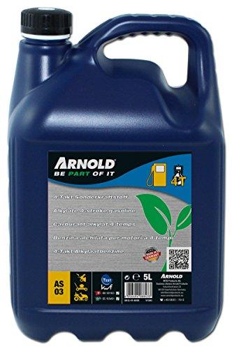 ARNOLD 6012-4T-0005 4T 4-Takt Sonderkraftstoff, 5 Liter