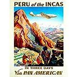 Wee Blue Coo TRAVEL Tourism Peru South America Plane