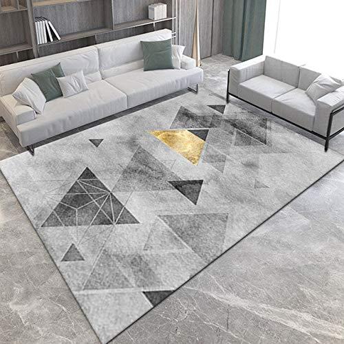 Alfombra sala de estar mesa de café manta área grande sofá piso cojín dormitorio gama alta luz nórdica lujo hogar cushion-15,80x120CM