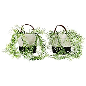 Skootz 2pack Wall Hanging Basket Bundle – 6.3″ x 7″ Small Woven Organizer – Includes Two Artificial Plants – Perfect for Indoor Outdoor Storage, Decor and Virtual Learning Organizer (Black/White)