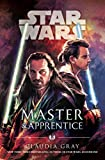 Master And Apprentice Star Wars