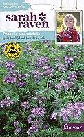 【輸入種子】 Johnsons Seeds Sarah Raven Brilliant for Bees & Butterflies Phacelia tanacetifolia サラ・レイブン ビー&バタフライ ファセリア・タナケチフォリア ジョンソンズシード
