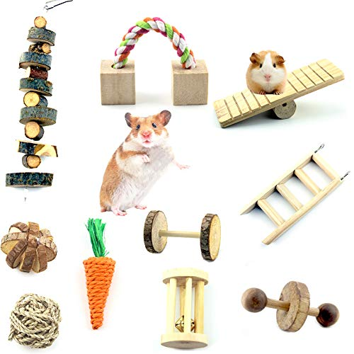Hamster Chew Toys Set 10 Pack, Guinea Pig Chew Toys Natural Apple Wood Hamster Toys Chew Toy Rat, Small Animal Toys and Chew Toys for Rabbit