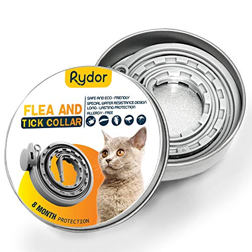 collar antipulgas hartz gatos fabricante RYDOR
