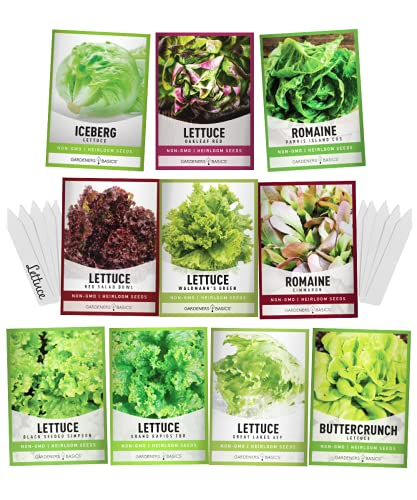 Salad Greens Lettuce Seeds Heirloom Vegetable Seed 23,000 Seeds for Planting Indoors and Outdoor 10 Packs - Buttercrunch, Romaine, Iceberg, (and More) Leaf and Head Variety Pack by Gardeners Basics
