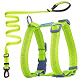 ThinkPet Comfort Harness & Reflective Leash Set, Snug Fit, Easy On and Off, No Choke Dog Walking Harness, Nylon Reflective Adjustable Halter Harness Leash Set for Dogs L Green