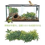 Pssopp 爬虫類 植物 人工植物 人工つる 爬虫類 つる 両生類 爬虫類 飼育ケース内装 飾り物 テラリウム 生息地 装飾 水族館 水槽飾り 吸盤付き タンク プラスチック 葉 植物 装飾 丈夫(50cm)