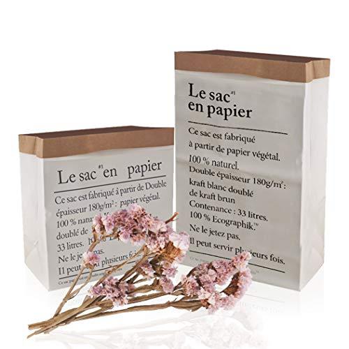 YLX Papiersack Paper Bag Kraft, Kleine Big Size Doppelschichten Kraft Paper Bag Aufbewahrungsbox Papiersack Kraftpapier Geschenk Weiß Papiertüten (2 Stücke)