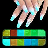 Brussels08, 1 scatola di 12 colori che si illuminano al buio, pigmenti luminosi per unghie fai da te per manicure e fai da te
