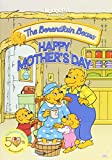 Berenstain Bears: Happy Mother's Day [Import USA Zone 1]