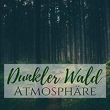 Dunkler Wald Atmosphäre - Ambient Avant Gard Lieder zum Entspannen und Chillen