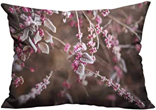 YouXianHome Home DecorCushion Covers Frost Frosted Branches Comfortable and Breathable(Double-Sided Printing) 19.5x30 inch