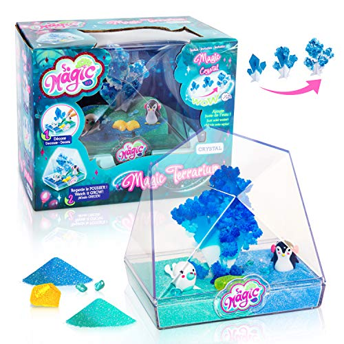 Canal Toys So Magic-Medium Terrarium-Crystal, MSG 014
