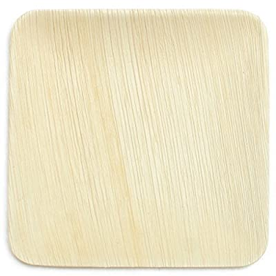 Leaf & Fiber 25 Count Elegant and Sustainable Fallen Palm Leaf Plates