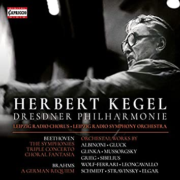 Beethoven, Brahms & Others: Orchestral Works