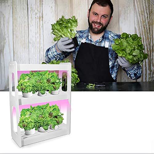 Smart Garden, Capa 20W Doble Full Spectrum luz LED Crecimiento con el botón Interruptor de Encendido, no Contiene Semillas