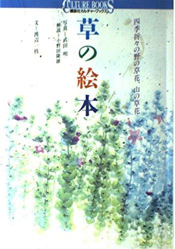 草の絵本―四季折々の野の草花、山の草花 (講談社カルチャーブックス)