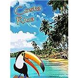Froy Costa Rica Wand Blechschild Retro Eisen Poster Malerei