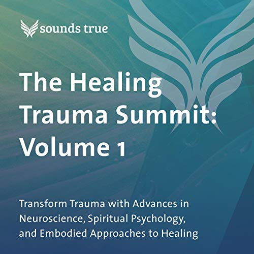 The Healing Trauma Summit: Volume 1 audiobook cover art