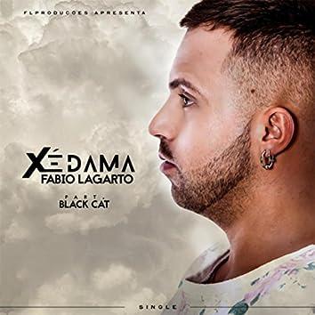 Xé Dama (feat. Black Cat)