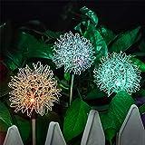 Solar Stake Lights, Garten Ornament Light, Wasserdicht Und Kommt Lampe Mit Ground Spikes, Dekoration...