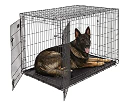 What Size Dog Crate Do You Need The Ultimate Guide