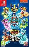 Pat' Patrouille : La Super Patrouille Sauve La Grande Vallée (Nintendo Switch)