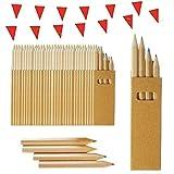 100 Sets de Crayons de Couleur pour Enfants Partituki. Chacun avec 4 Mini Crayons. Avec Guirlande de 10 m. Idéal pour les Sacs de Fête, les Cadeaux de Mariage, et les Écoles